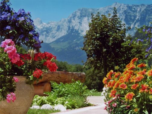 Garten mit Blick zur Reiteralpe